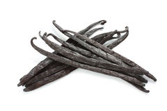 Madagascar vanilla beans Royalty Free Stock Images