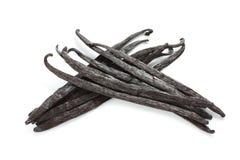 Madagascar vanilla beans Royalty Free Stock Images