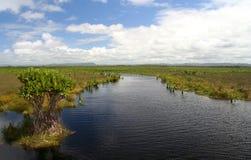 Free Madagascar Wetland And Lakes Stock Photos - 23101433
