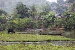 Madagaskar krajobrazu Obrazy Royalty Free