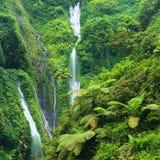 Madakaripura瀑布在东爪哇省, I 免版税库存照片