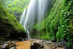 Madakaripura瀑布深森林瀑布在东爪哇省, Indon 库存图片