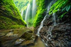 Madakaripura瀑布 库存照片