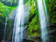 Madakaripura siklawa w Indonezja Zdjęcie Stock