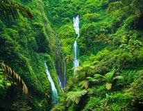 Madakaripura vattenfall, East Java, Indonesien Arkivfoton