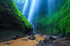 Madakaripura vattenfall, East Java, Indonesien Arkivbilder