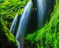 Madakaripura-Wasserfall, Osttimor, Indonesien stockbild