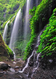 Madakaripura Waterfall in Bromo Tengger Semeru National Park Indonesia Stock Photography