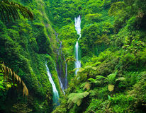 Madakaripura  Waterfall, East Java, Indonesia Stock Photos