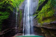 Madakaripura Waterfall, Indonesia royalty free stock photos