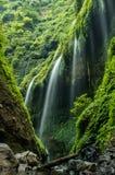 Madakaripura waterfall. Indonesia. royalty free stock images