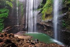 Madakaripura Waterfall in Indonesia. Madakaripura Waterfall is  tourist spot in in Indonesia Royalty Free Stock Photo