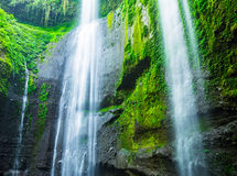 Madakaripurawaterval in Indonesië Stock Foto