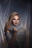 Madame à l'arrière-plan d'étoile avec drapent le tissu argenté gris ha de scintillement photos libres de droits