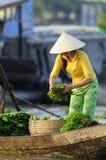 Madame au Vietnam Image libre de droits