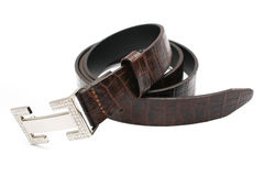 Madame Belt Photographie stock