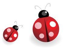 Madame Bug Images libres de droits