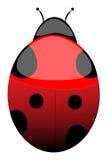 Madame Bug illustration de vecteur