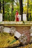 Madame dans la forêt d'automne Photo libre de droits
