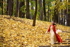 Madame dans la forêt d'automne Photographie stock