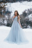 Madame dans une robe bleue luxuriante de luxe photo stock