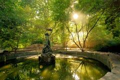 Madame du jardin Images libres de droits