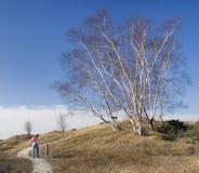 Madame Hiking sur la promenade Image libre de droits