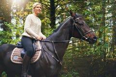 Madame montant un cheval brun en parc Photo stock