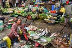 Madame vendant des poissons au marché de Battambang sur le Cambodge Photos libres de droits