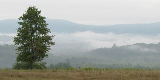 Madawaska Valley Mist, Canada stock photo