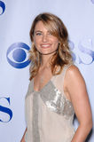 Madchen Amick. Viva Laughlin star Madchen Amick at the CBS Summer Press Tour Stars Party 2007 on the Wadsworth Theatre Great Lawn. July 20, 2007  Los Angeles, CA Stock Photography
