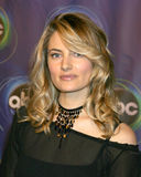 Madchen Amick Royalty Free Stock Photos