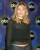 Madchen Amick. ABC TV TCA Party The Wind Tunnel Pasadena, CA January 21, 2006 Royalty Free Stock Photography