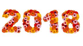 2018 made of flowers. On white background royalty free stock photo