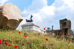 Made in the heart of ancient Rome. These flowers were among the Stock Photos