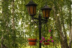 Beautiful roadside lamps with ornament. royalty free stock photo