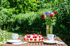 Made summer table in garden Stock Image