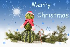 Made from watermelon Snowman in red hat and scarf on blue background with falling snowflakes. Made from watermelon Snowman in red hat and scarf with candy cane royalty free stock image