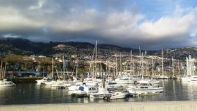 Madeiraö fotografering för bildbyråer