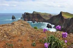 Madeiraökustlinje Arkivfoto