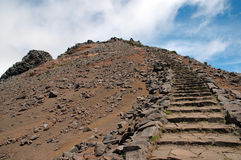Madeira ö Arkivbild