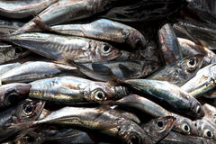 Madeira. Scene in portugal / island of madeira / funchal / mercado dos lavradores Stock Photo