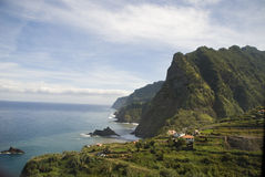 Madeira Foto de Stock Royalty Free