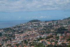 Madeira arkivbilder