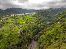 Madeira Stock Images