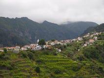 Madeira Lizenzfreies Stockfoto