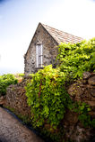 Madeira royaltyfri fotografi