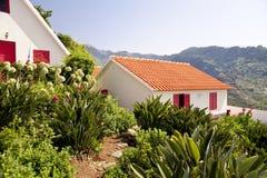 Madeira fotografering för bildbyråer