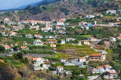 Madeira Royalty Free Stock Photography