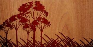 Madeira agradável no fundo de madeira - versão 4 Fotografia de Stock